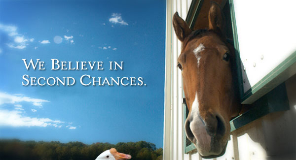 We believe in second chances.