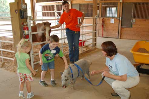 Children can enjoy age-appropriate programs with our humane educators.