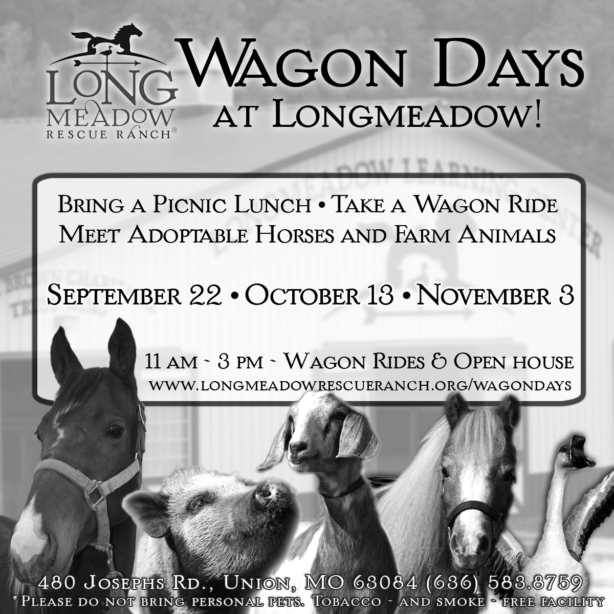 Visit Longmeadow for Fall 2018 Wagon Days events