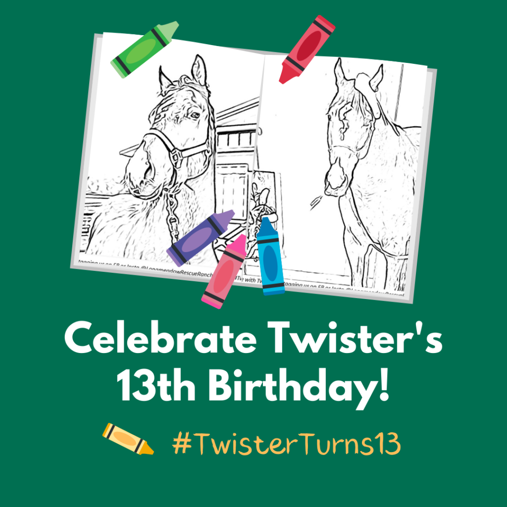 Celebrate Twister's Birthday!