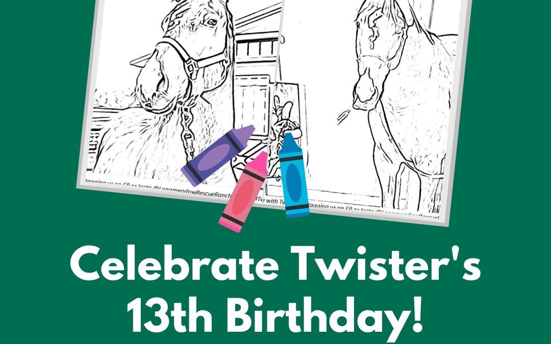 Twister Turns 13!